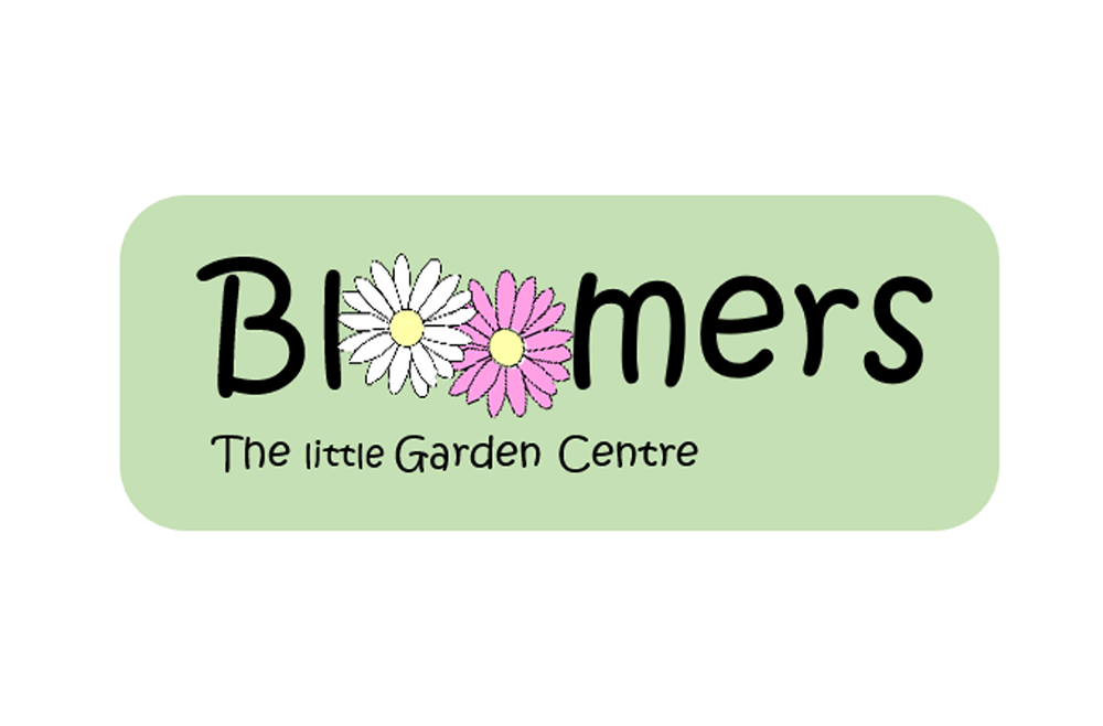 Bloomers of Belper
